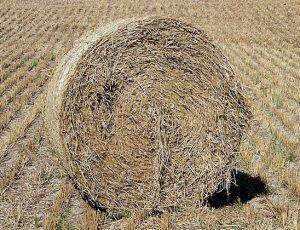 Haystack Hay Bale Stack Sussex